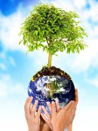 20120304121624-medio-ambiente.jpg