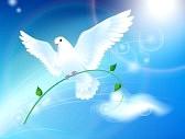 Paloma_de_la_paz : Paloma de la Paz en el cielo